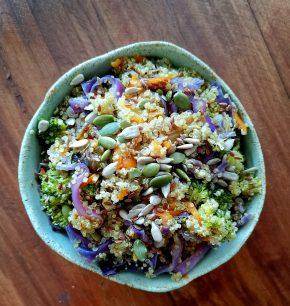Quinoa silvestre