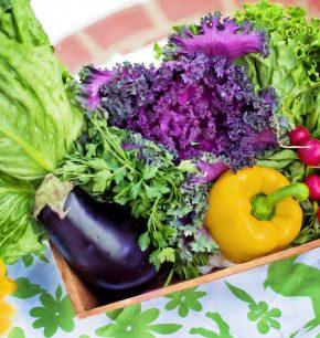 Comida saludable para niños: cómo agregar verduras en todos sus platos